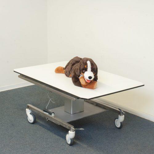 Behandlungstisch-Tierarzt
